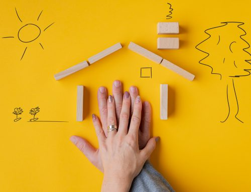 Build a New Home or Buy an Established One?