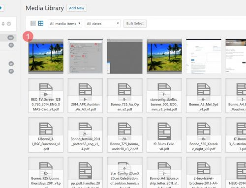 The Best Way to Organise Image and Media Files in WordPress